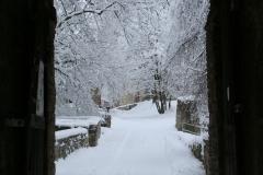 20100107-Winterthing-4596