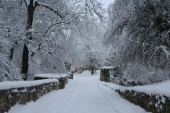 20100107-Winterthing-4598