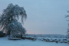 20100108-Winterthing-4605